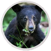 Wildflower Bear Round Beach Towel