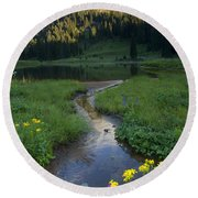 Wildflower Stream Round Beach Towel
