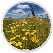 Wildflowers And Barbed Wire Round Beach Towel