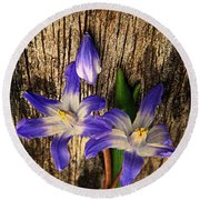 Wildflowers On Wood Round Beach Towel