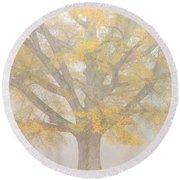 Willow Oak In Fog Round Beach Towel by Bill Swindaman
