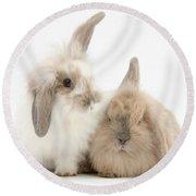 Windmill-eared Rabbits Round Beach Towel