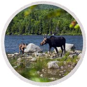 Window To The Moose Round Beach Towel