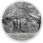 Winter At The Edge Of The Woods Round Beach Towel
