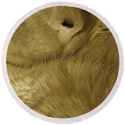 Winter Coat Round Beach Towel