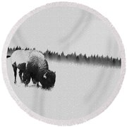 Winter Graze Round Beach Towel