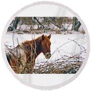 Winter Horse Landscape Round Beach Towel
