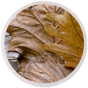 Autumn Leaves Of Gold Round Beach Towel