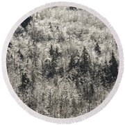 Winter Trees Covered In Ice Round Beach Towel