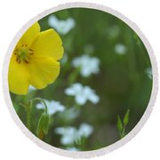 Wood Sorrel And Sandwort Round Beach Towel