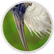 Woodstork Portrait Round Beach Towel