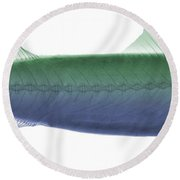 X-ray Of An Atlantic Mackerel Round Beach Towel