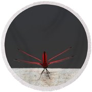 X Wing Dragonfly Round Beach Towel