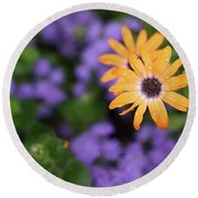 Yellow And Purple Round Beach Towel