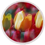 Yellow And Red Tulip Blooms Round Beach Towel