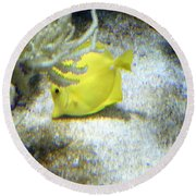 Yellow Angelfish Round Beach Towel