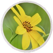 Yellow Artichoke Round Beach Towel