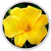 Yellow Beauty  Round Beach Towel