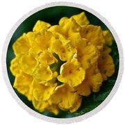 Yellow Blooms Round Beach Towel