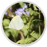 Yellow Butterfly Feeding On Violet Flower Round Beach Towel