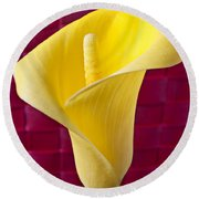 Yellow Calla Lily Red Mat Round Beach Towel