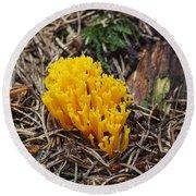 Yellow Coral Mushroom Round Beach Towel