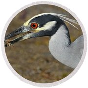 Yellow Crowned Night Heron With Catch Round Beach Towel