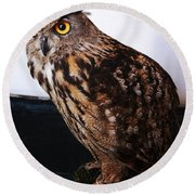 Yellow-eyed Owl Side Round Beach Towel