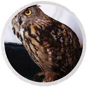 Yellow-eyed Owl Side Round Beach Towel