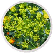 Yellow Firework Or Dill In Its Glory Round Beach Towel