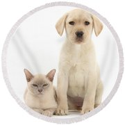Yellow Lab And Burmese Cat Round Beach Towel