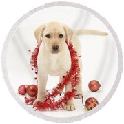 Yellow Lab Pup At Christmas Round Beach Towel