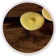 Yellow Mushrooms2 Round Beach Towel