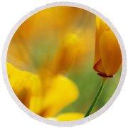 Yellow Poppy Round Beach Towel