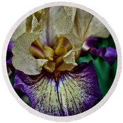 Yellow  Purple Iris Round Beach Towel
