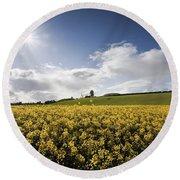 Yellow Rapeseed Field, Newgrange Round Beach Towel