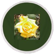 Yellow Rose At High Noon Round Beach Towel by Alys Caviness-Gober