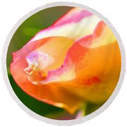 Yellow Rose Tipped In Pink Round Beach Towel