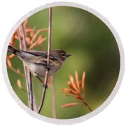 Yellow-rumped Warbler - Peaceful Pastels Round Beach Towel