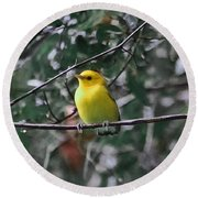 Yellow Songbird Round Beach Towel