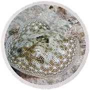 Yellow Stingray In Caribbean Sea Round Beach Towel