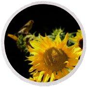 Yellow Sunflowers Round Beach Towel