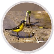 Yellow Wagtail Round Beach Towel