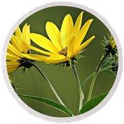 Yellow Wildflower 2 Round Beach Towel