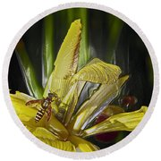 Yellowjacket Round Beach Towel