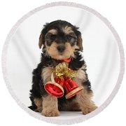 Yorkipoo Pup Wearing Christmas Bells Round Beach Towel
