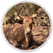 Young Longhorn Steer Round Beach Towel