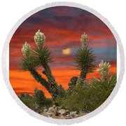 Yucca Blooming Sunset-moonset Round Beach Towel