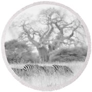 Zebra And Tree Round Beach Towel