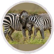 Zebra Hug Round Beach Towel